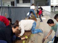 Aprendizaje cooperativo aplicado a Proyectos Interdisciplinares