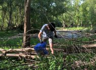 Trabajo colaborativo limpieza del río Iregua
